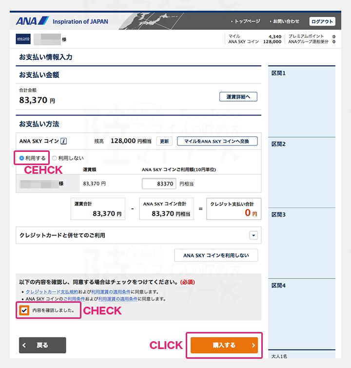 SKYコインでの支払い手順5:支払い設定をする。