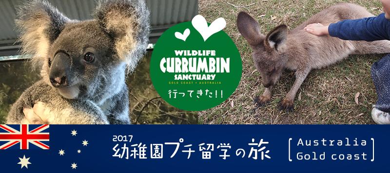 ゴールドコースト カランビン ワイルドライフ サンクチュアリーにコアラとカンガルーを見に行ってきた!